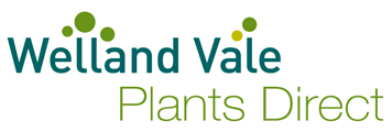 Welland Vale Plants Direct